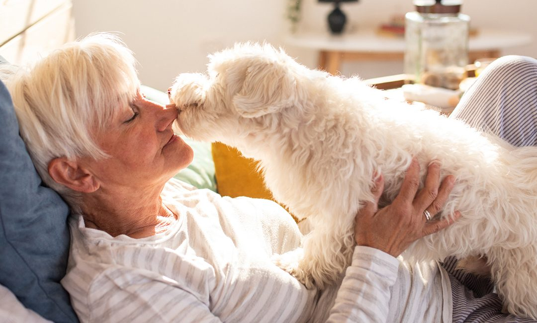 The Healing Power of Pets for Seniors
